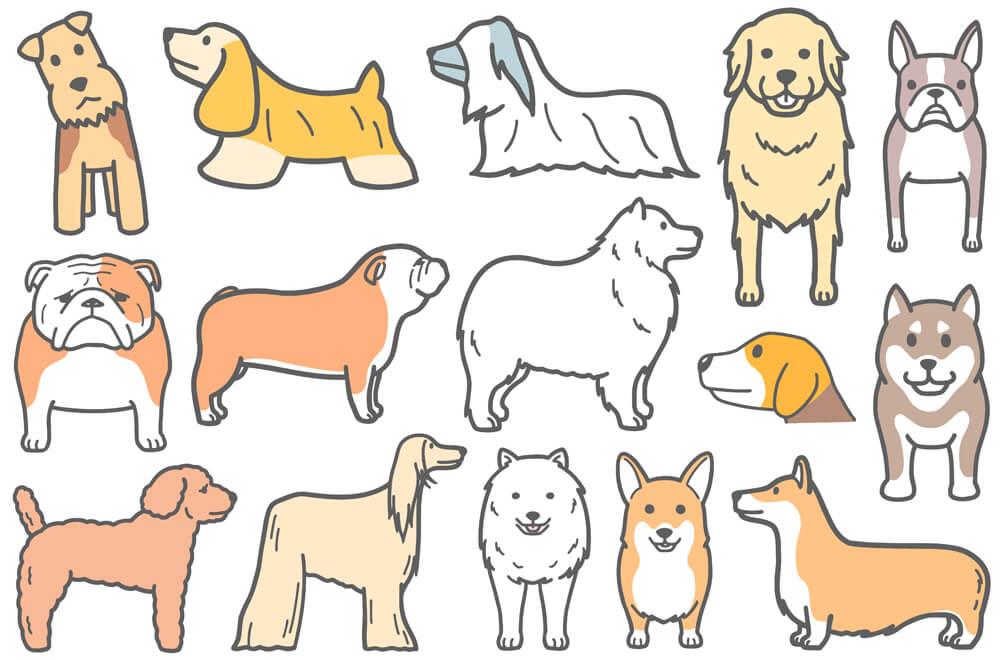 正面向きのコーギーなどの犬イラスト