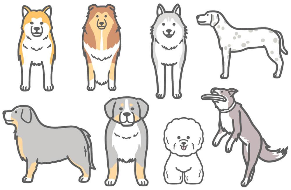 正面向きハスキーなどの犬イラスト