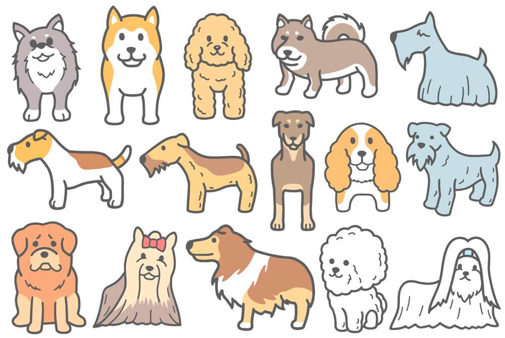 柴犬などの犬イラスト