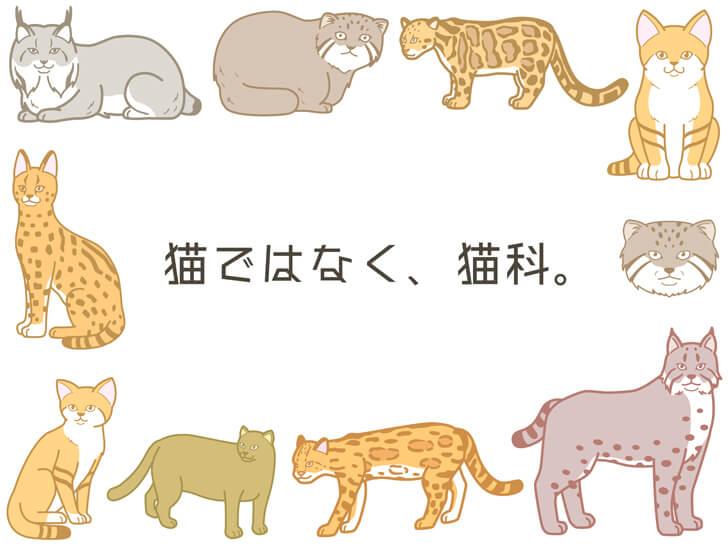 猫科動物のフレームイラスト